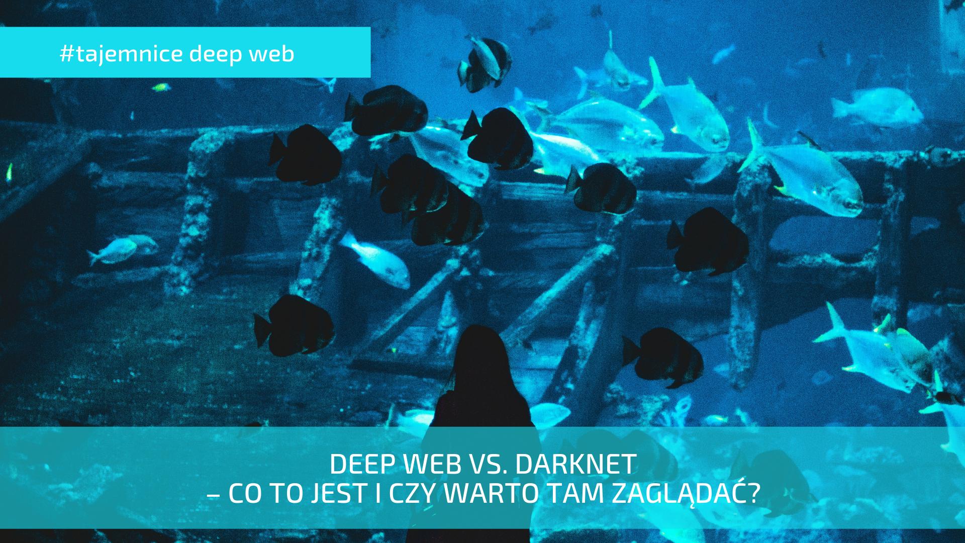 deeb web vs darknet